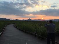 untitled-sunset-wetland-2