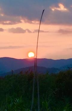 untitled-sunset-wetland-3