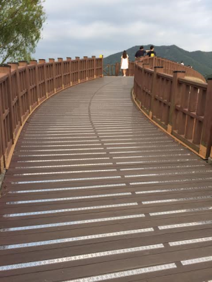 untitled-wetland-bridge-1
